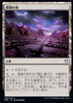 廃墟の地/Field of Ruin(THB)【日本語FOIL】