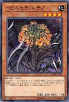 イビルセラ・ルテア【ノーマル】IGAS-JP027