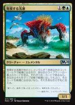 発現する浅瀬/Risen Reef(M20)【日本語 FOIL】