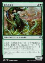 進化の賢者/Evolution Sage(WAR)【日本語FOIL】