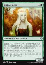 楽園のドルイド/Paradise Druid(WAR)【日本語FOIL】