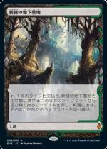 新緑の地下墓地/Verdant Catacombs(ZNR)(EXP)【日本語】