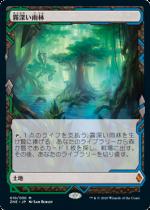 霧深い雨林/Misty Rainforest(ZNR)(EXP)【日本語】