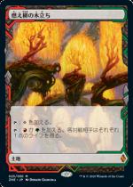 燃え柳の木立ち/Grove of the Burnwillows(ZNR)(EXP)【日本語FOIL】