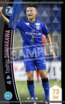 【ランクアップ済み】トシオ・シマカワ《F20-6 45-R》