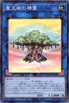 聖天樹の精霊【ノーマル】SLT1-JP032