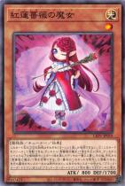 紅蓮薔薇の魔女【ノーマル】LIOV-JP010