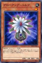グローアップ・バルブ【ノーマル】SD32-JP021