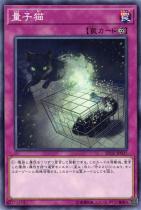 量子猫【ノーマル】SD32-JP037