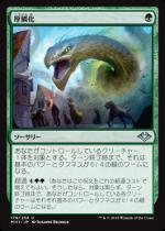 厚鱗化/Scale Up(MH1) 【日本語】