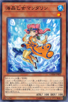 海晶乙女マンダリン【ノーマル】CHIM-JP002