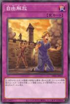 自由解放【ノーマル】DP25-JP033