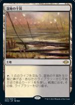 湿地の干潟/Marsh Flats(MH2)【日本語】