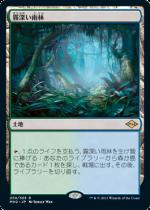 霧深い雨林/Misty Rainforest(MH2)【日本語】