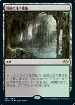 新緑の地下墓地/Verdant Catacombs(MH2)【日本語】