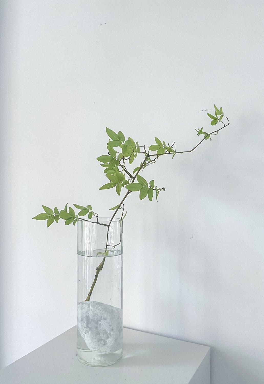 YURAGI Flower vase -light