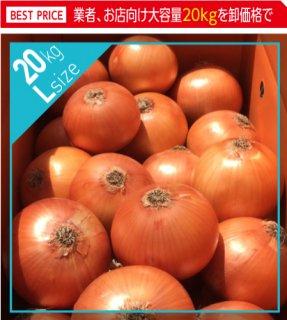 追熟甘玉ねぎ L 20kg | 送料無料 | 淡路玉葱
