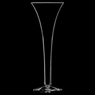 慧 さとり ガラス シャンパン 業務用