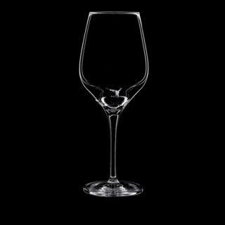 イクイジット 02 ワイン ガラス ワイン 業務用