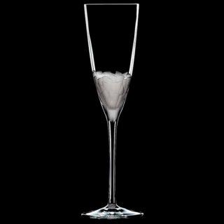 インテュイション フルート ガラス シャンパン 業務用