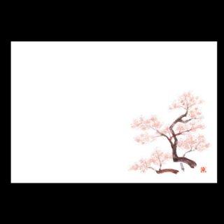 尺5寸 長手テーブルマット 桜 3月〜4月 100枚 紙製品 尺5寸長手紙マット 業務用
