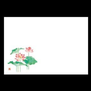 尺5寸 長手テーブルマット 蓮 7月〜8月 100枚 紙製品 尺5寸長手紙マット 業務用