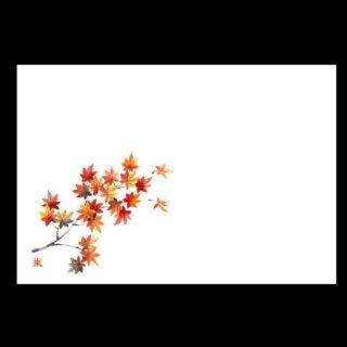 尺5寸 長手テーブルマット 紅葉 9月〜10月 100枚 紙製品 尺5寸長手紙マット 業務用