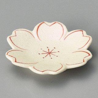 赤絵 桜皿 和食器 珍味 業務用