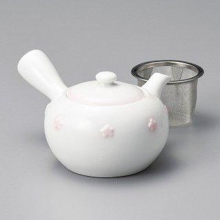 紅梅急須 和食器 土瓶(小) 業務用