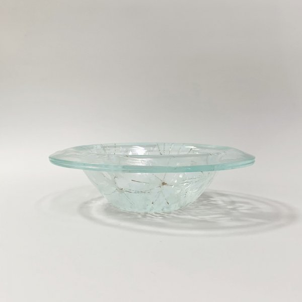 Higgins Glass / Coral Pattern Bowl / #25