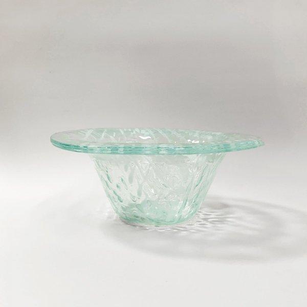 Higgins Glass / Coral Pattern Bowl / #26