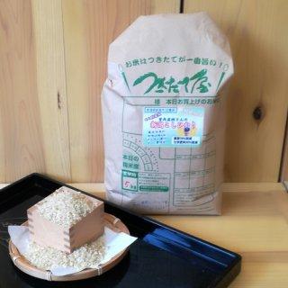 特別栽培米【令和2年産】<br>新潟県産<br>曽我直樹さん<br>コシヒカリ 5kg