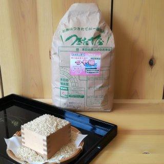 特別栽培米【令和2年産】<br>島根県産<br>出雲の国・つや姫 5kg