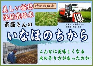 知ったら絶対に食べたくなる幻の農法<br>こんなに美味しくなる米の作り方があったのか!<br>特別栽培米 【令和2年産・新米】<br>栃木県さくら市<br>いなほのちから 5�
