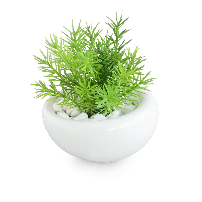 ミリオン 白陶器S フェイクグリーン