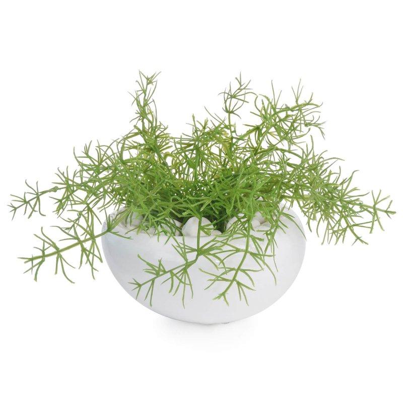 アスパラガス 白陶器S フェイクグリーン