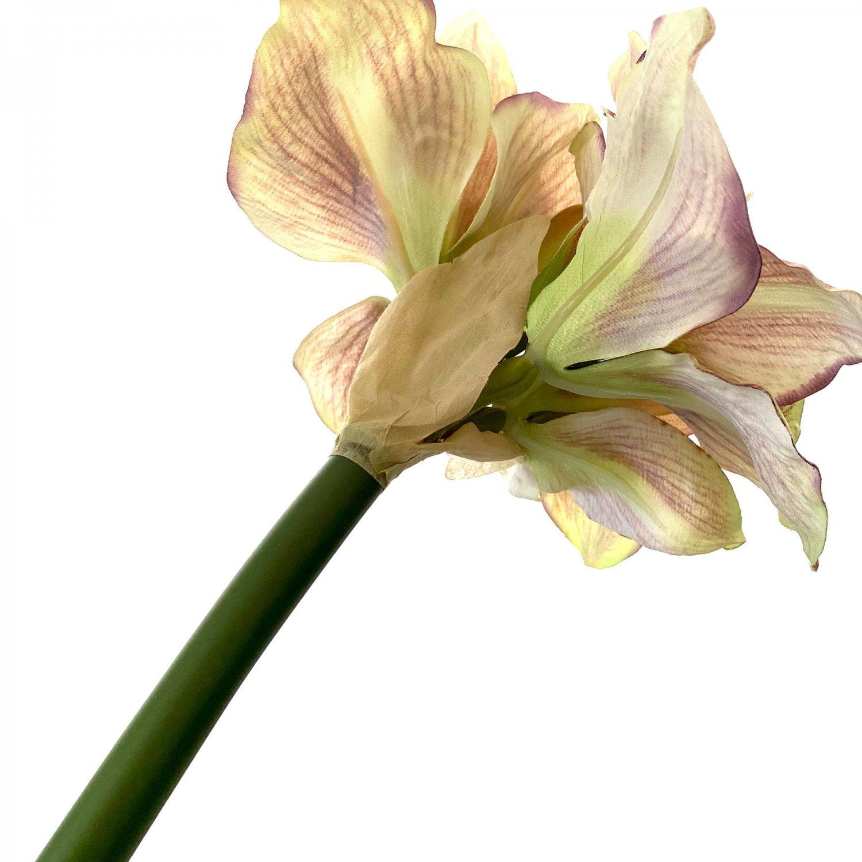 アマリリス ブラウン×グリーン 単品花材 アーティフィシャルフラワー アートフラワー