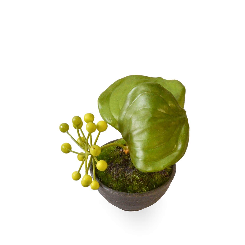 サンキライ ぐいのみ 黒錆 CUPBON 盆栽 フェイクグリーン