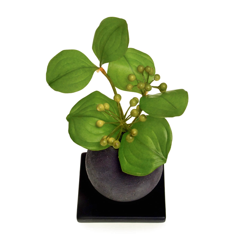 サンキライ 檜炭ボール(黒皿) CUPBON 盆栽 フェイクグリーン