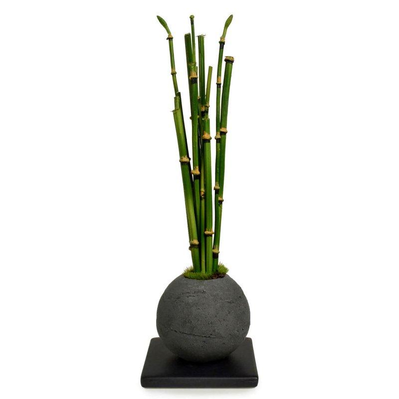 トクサ 檜炭ボール(黒皿) CUPBON 盆栽 フェイクグリーン