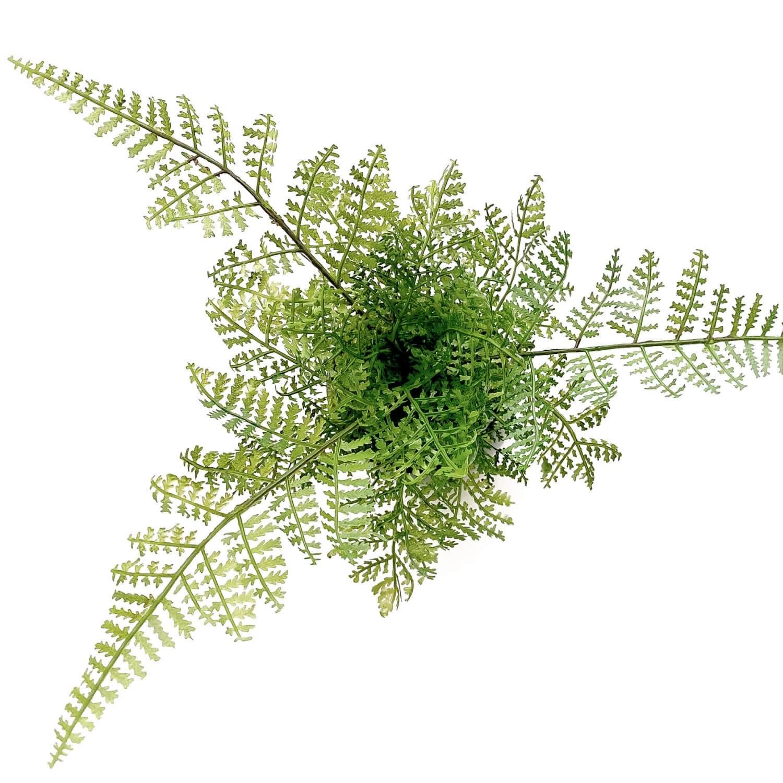 シノブ 小鉢 藍 CUPBON 盆栽 フェイクグリーン