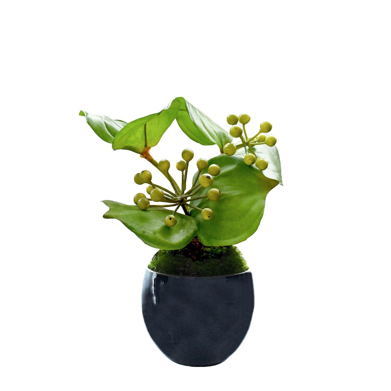 サンキライ 小鉢 藍 CUPBON 盆栽 フェイクグリーン