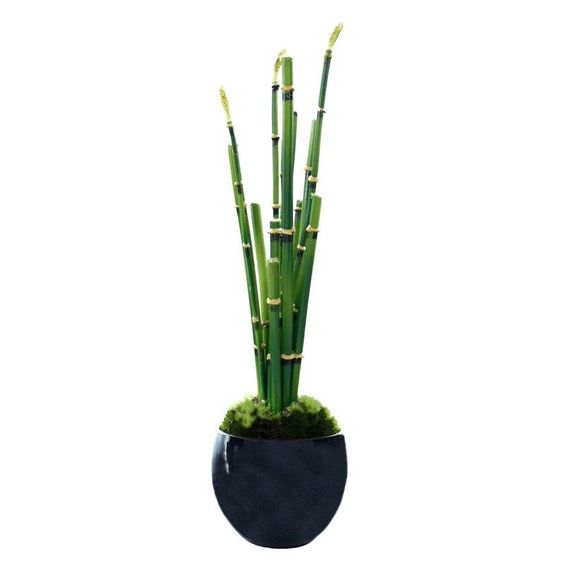 トクサ 小鉢 藍 CUPBON 盆栽 フェイクグリーン