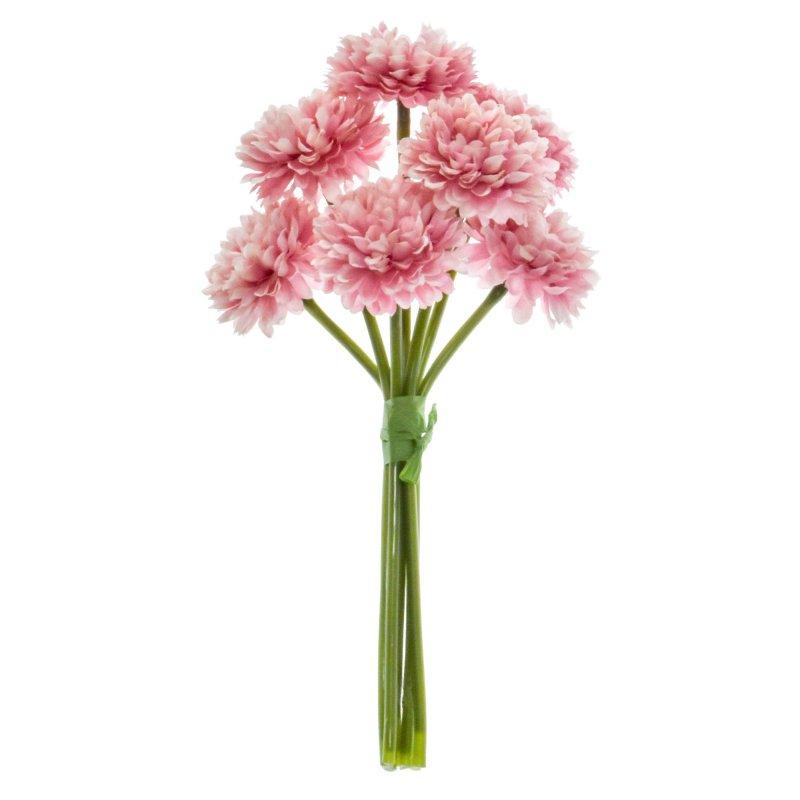 ボールマム 菊 ピンク 1束7本 単品花材