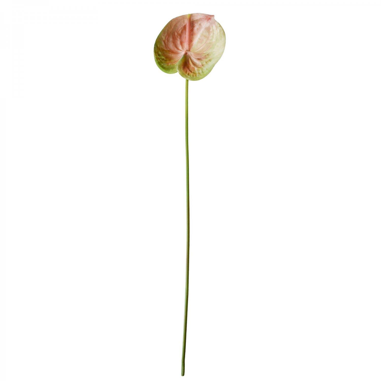 アンスリウム ピンク 単品花材 アーティフィシャルフラワー アートフラワー