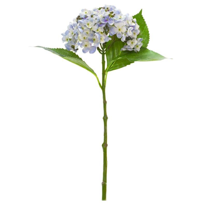 アジサイ葉付き ライトブルー 単品花材