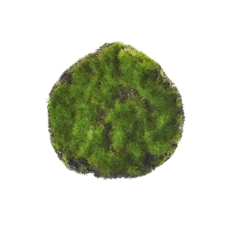 モスφ11  グリーン 単品花材