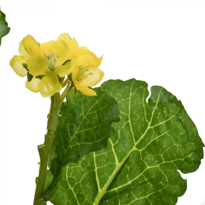 菜の花 イエロー  単品花材
