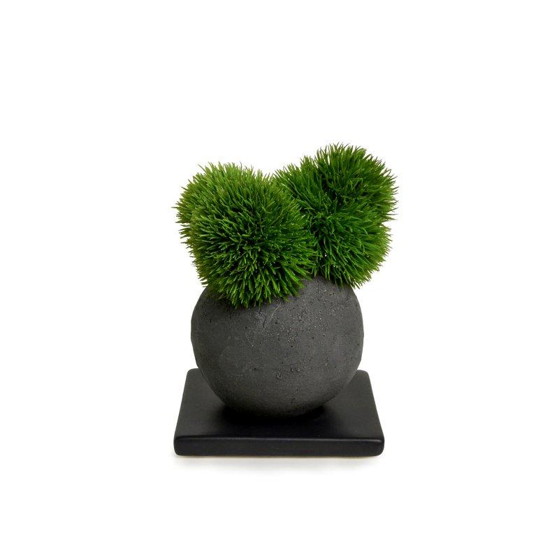マリモ 檜炭ボール(黒皿) CUPBON 盆栽 フェイクグリーン