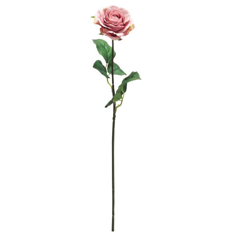 ローズ 薔薇 モーブピンク 単品花材